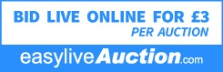 Easy Live Auction